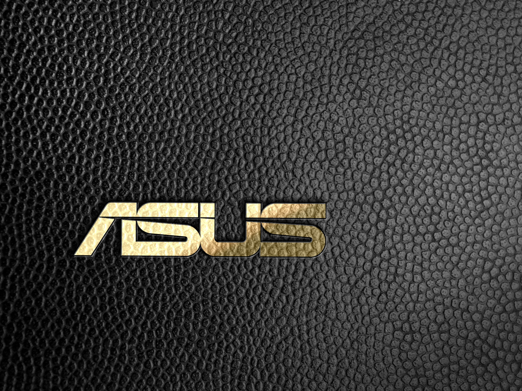 Asus logo on black leather