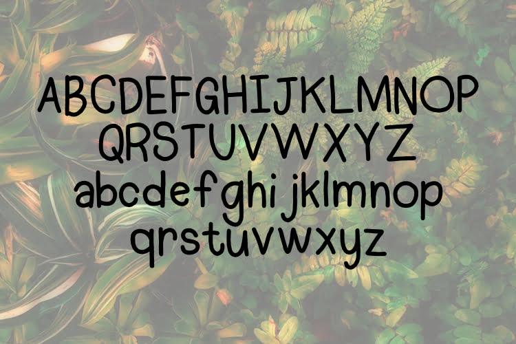 Allera Display Font