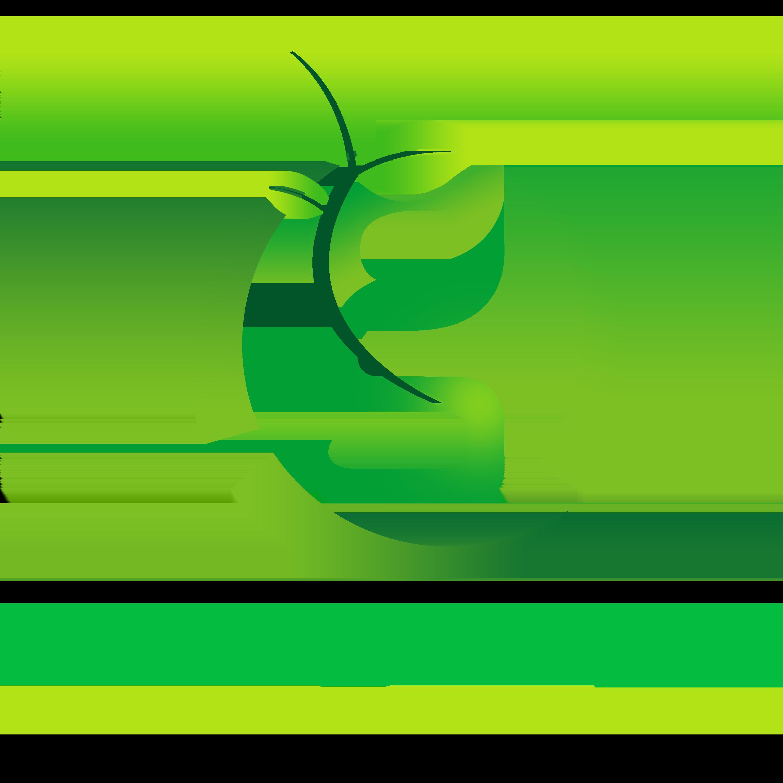 V Logo Template Set: Eco Green Light Energy Logo Design