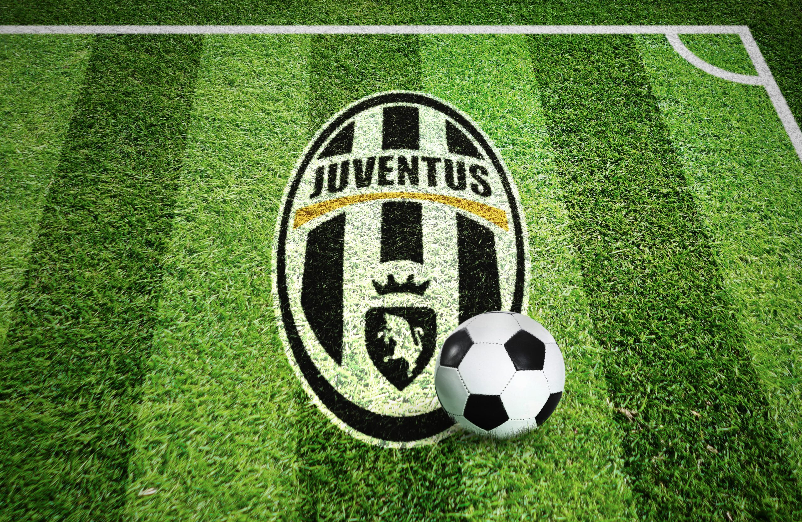 Juventus Stadium Grass Ground Logo Mockup
