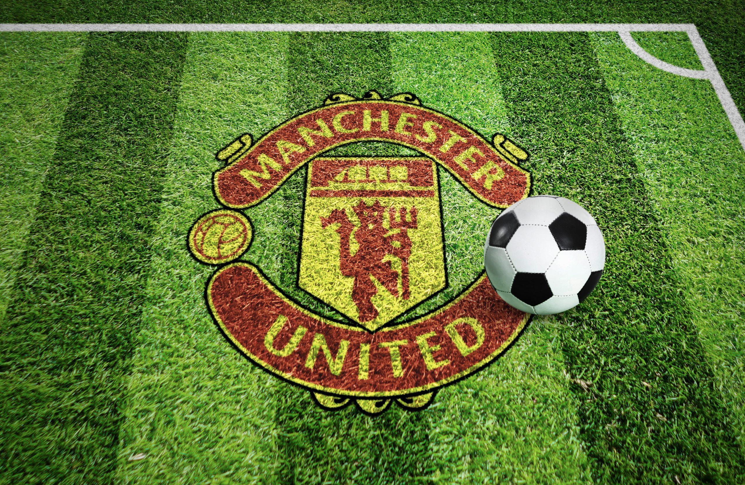 Manchester Stadium Grass Ground Logo Mockup