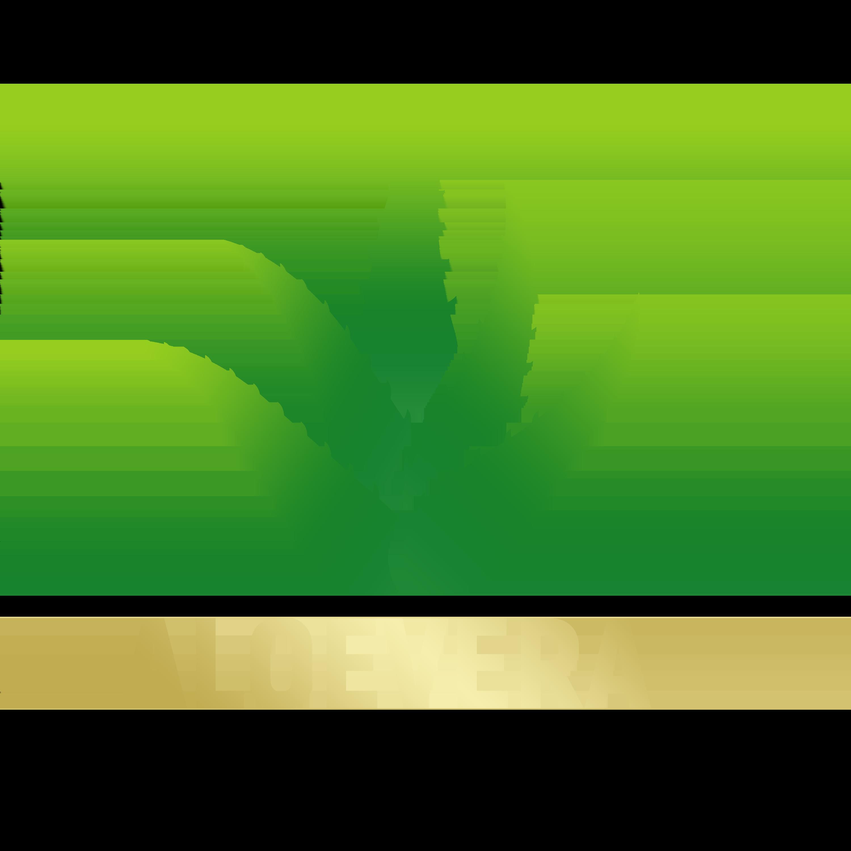 Aloevera-Logo-Design-PNG-Transparent