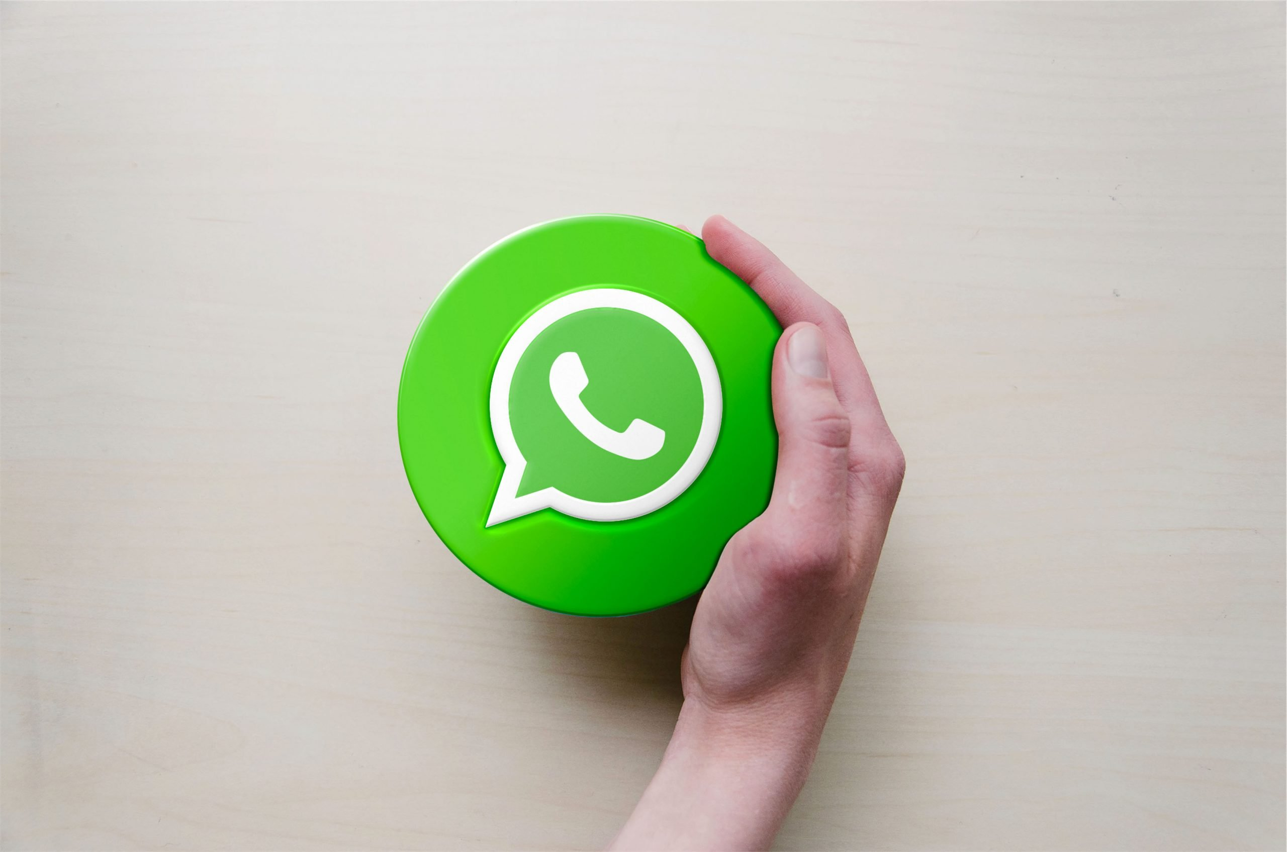 Circle with Hand Logo Mockup Whatsapp