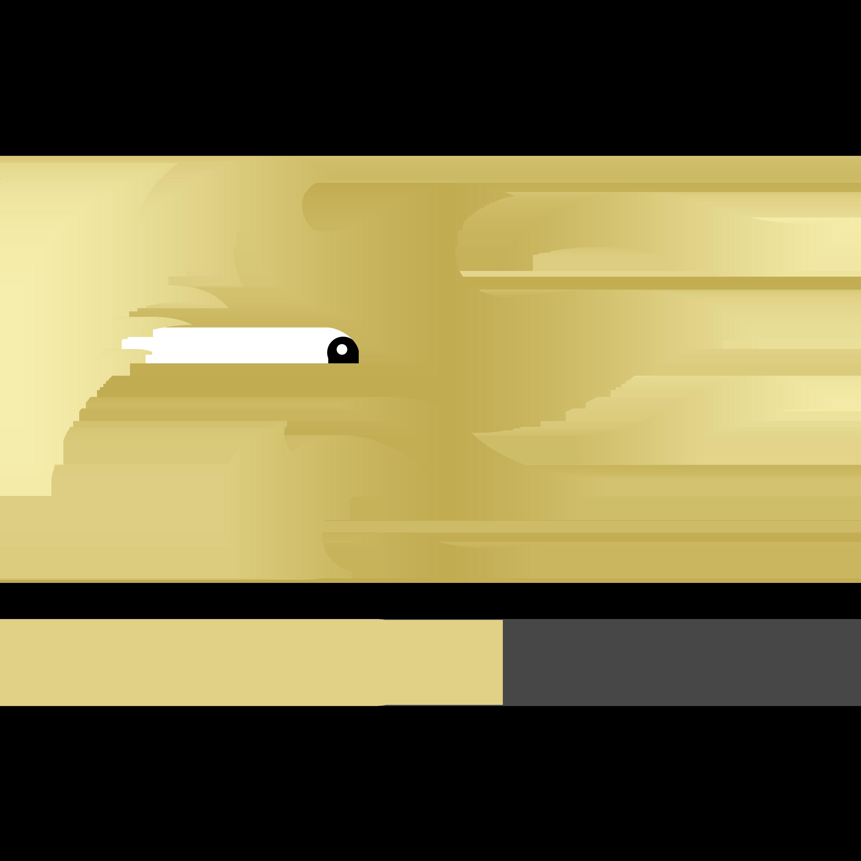 Dragon Logo Design PNG Transparent