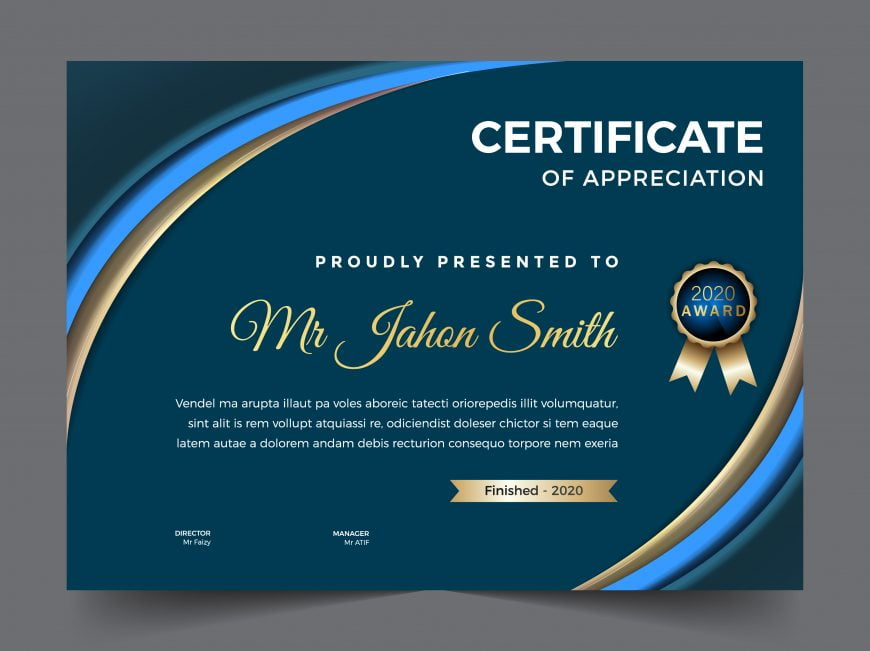 Company certificate template elegant design vector illustration