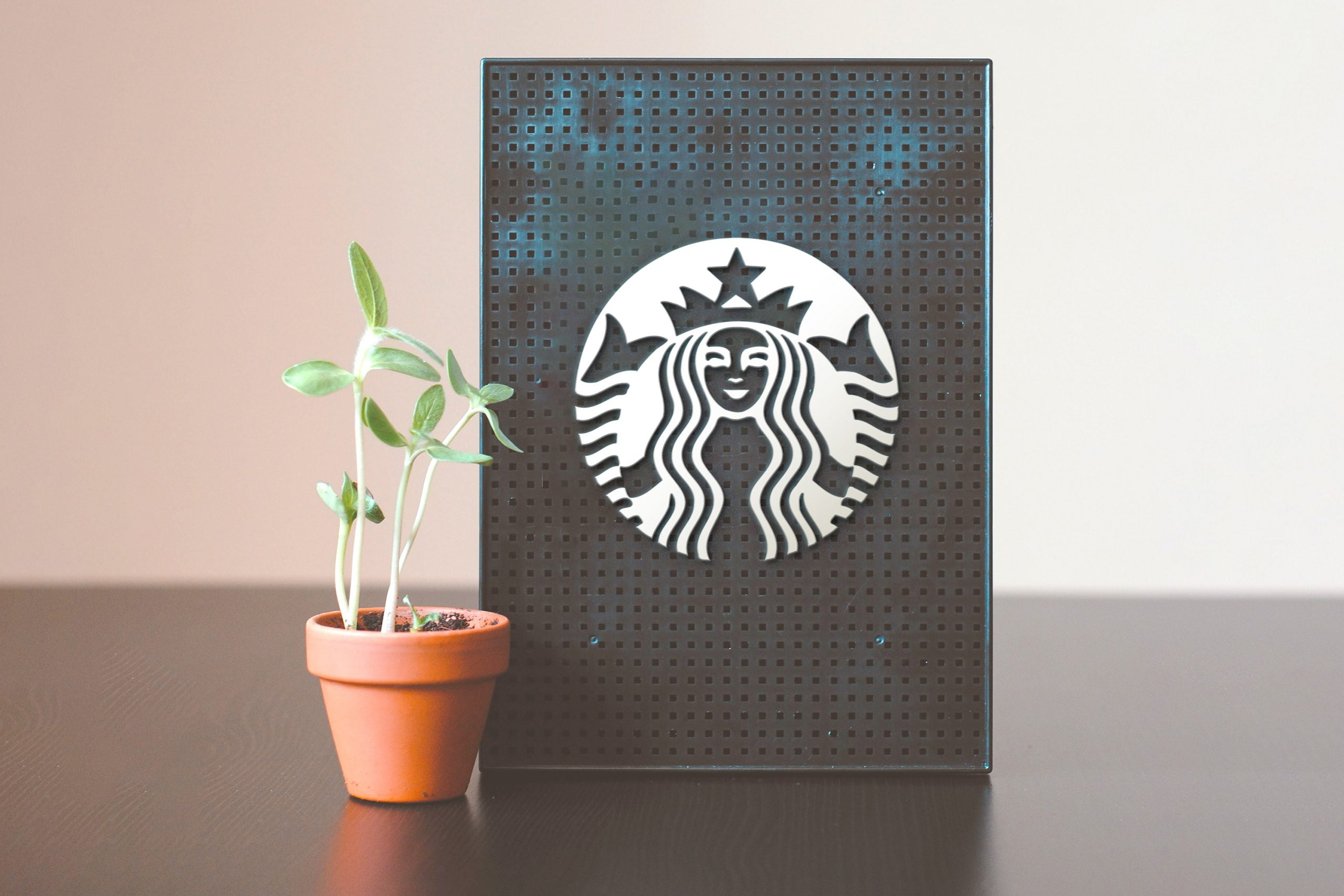 Download Table Board with plant Logo Mockup