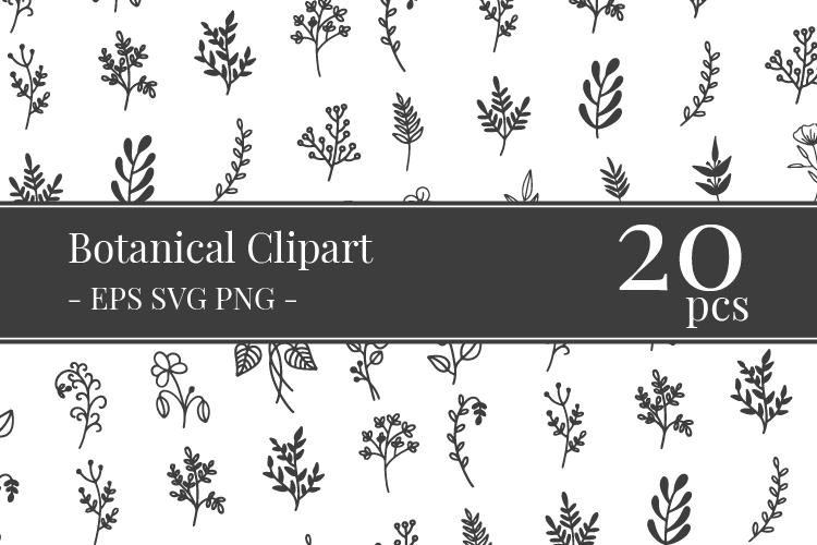 Free Botanical Vectors Clipart Bundle