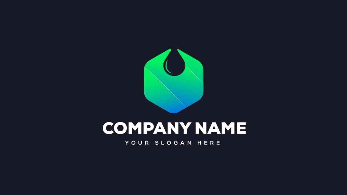 Water Drop Company Logo Design Template