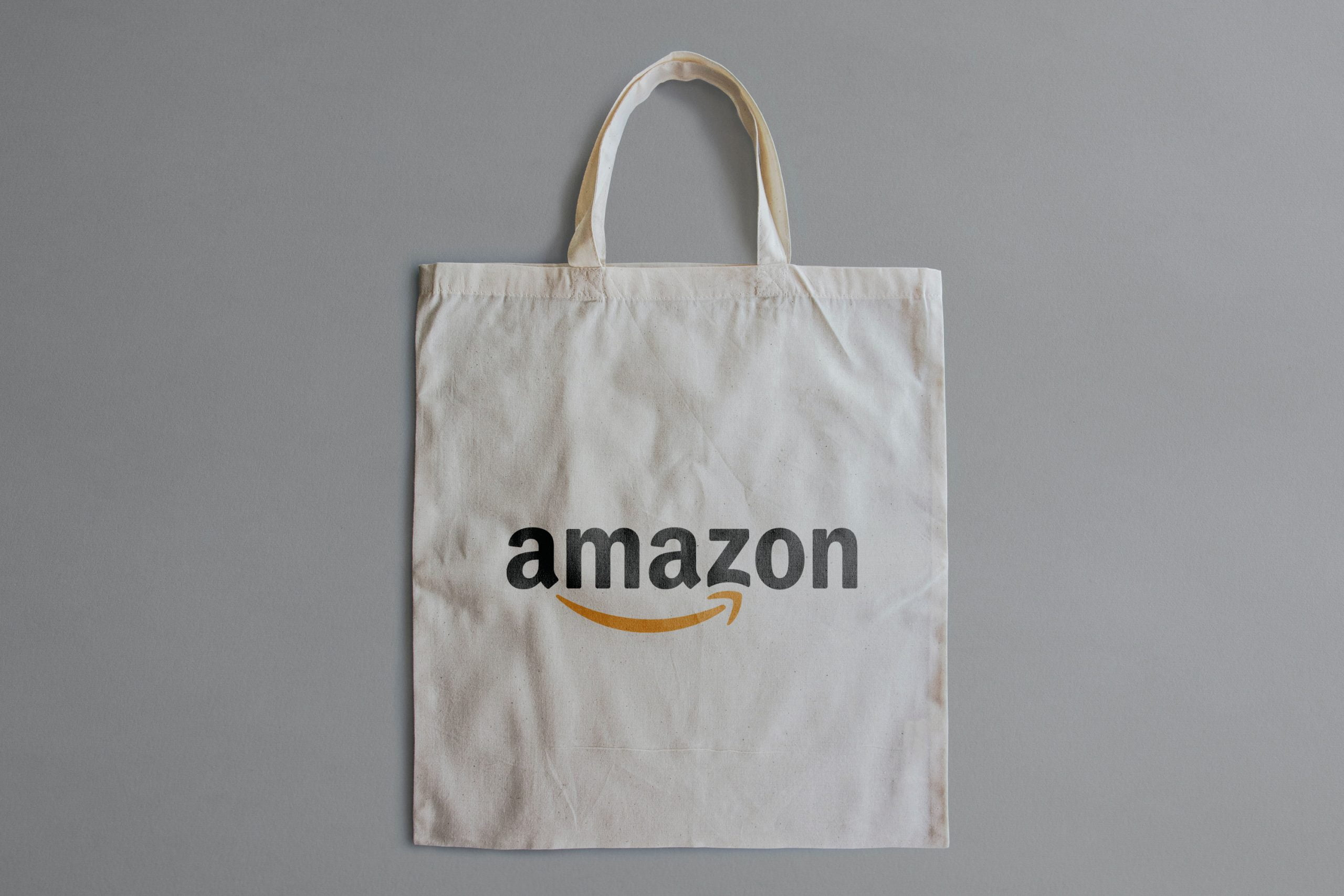 Free Cloth Bag Logo Mockup