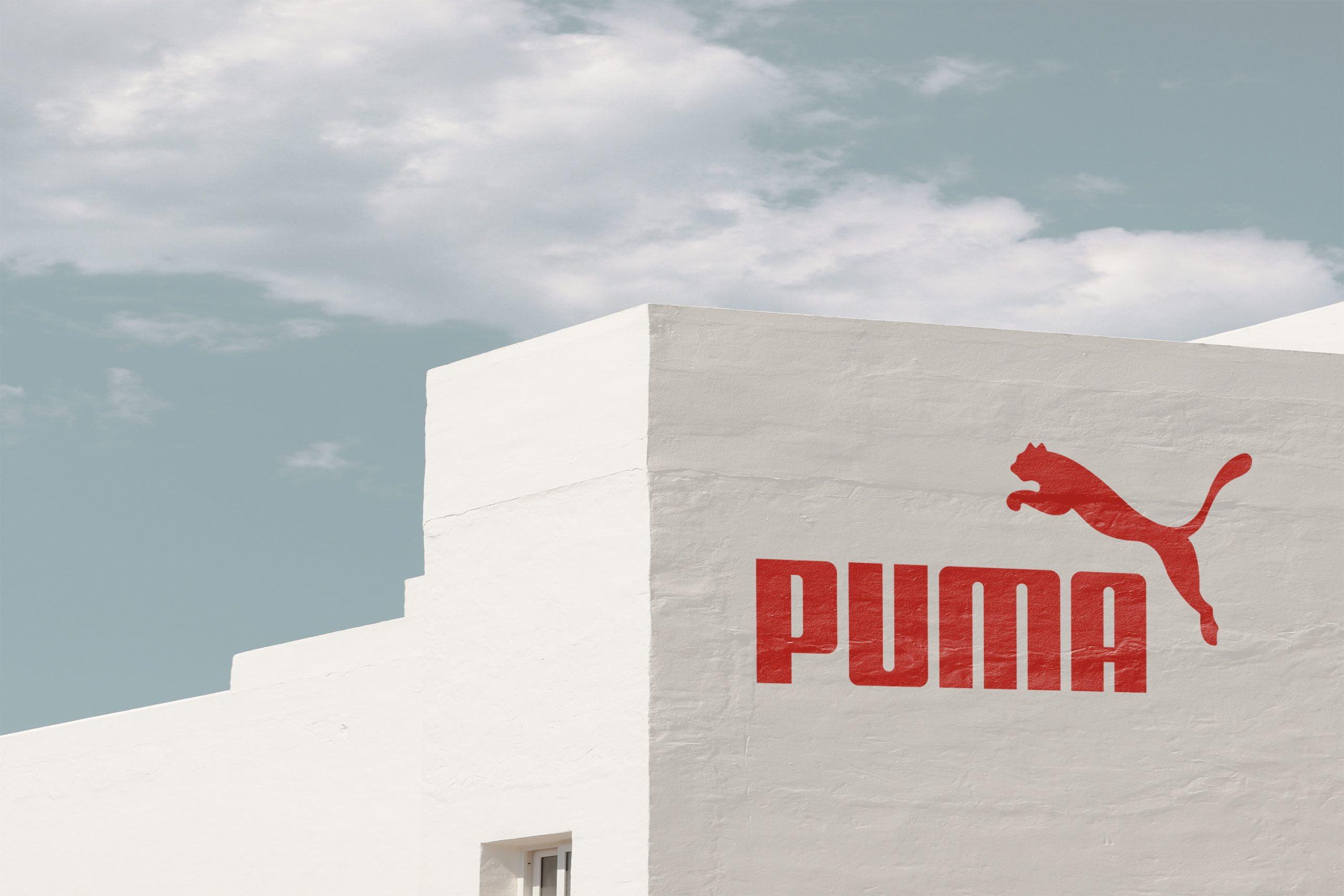 White painted wall realistic logo mockup